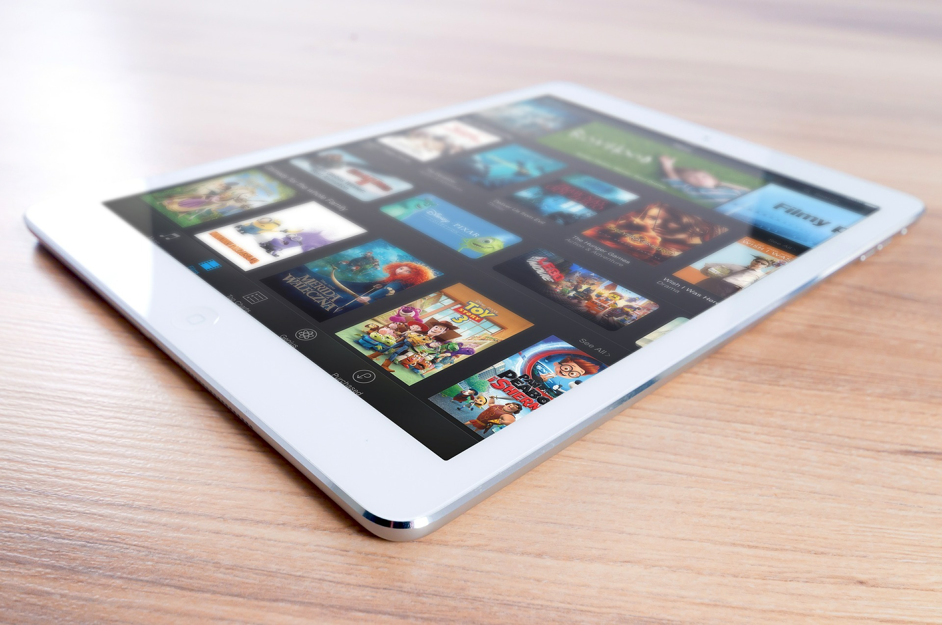 iPad Lending and Training Scheme with Hampshire Libraries